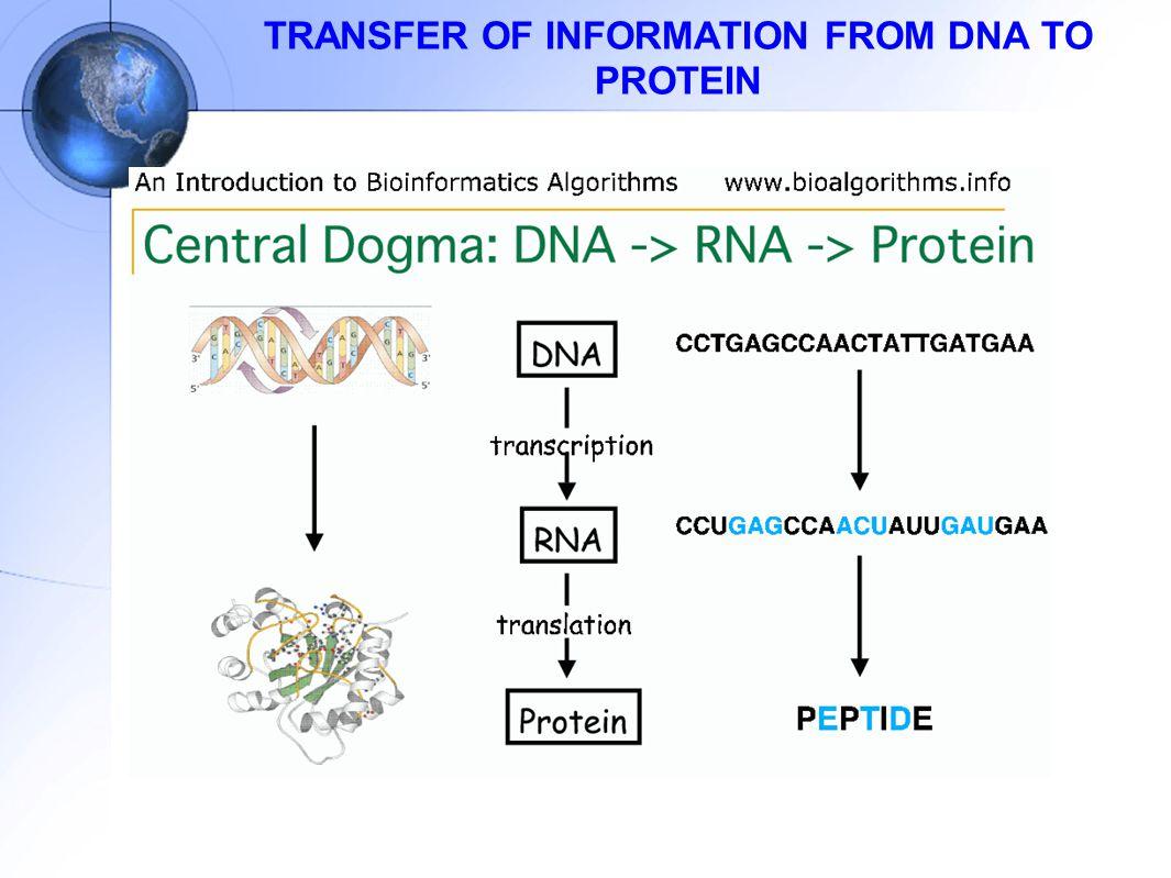 Sejarah dan perkembangan biokimia ppt download 36 transfer ccuart Images
