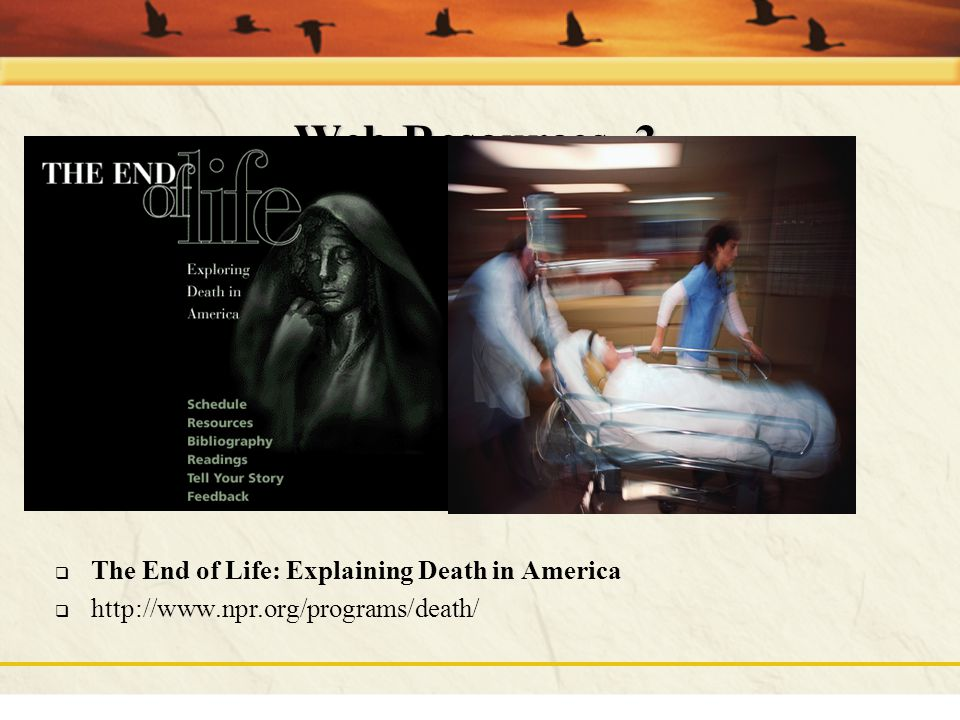 Web Resources, 3 The End of Life: Explaining Death in America