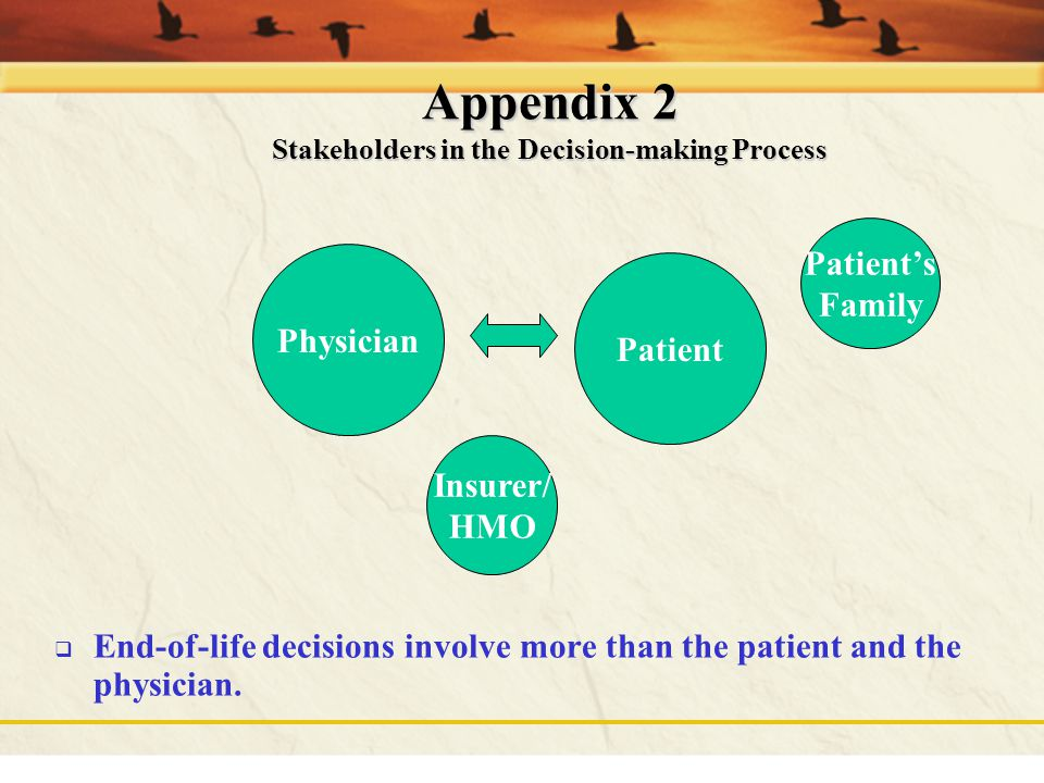 Appendix 2 Stakeholders in the Decision-making Process