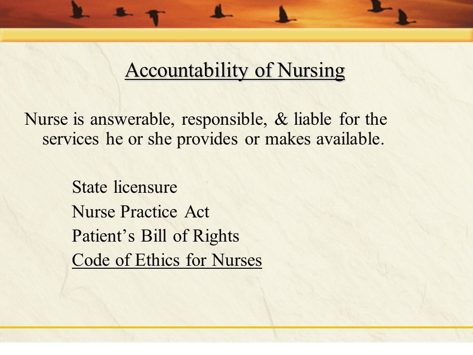 Accountability of Nursing