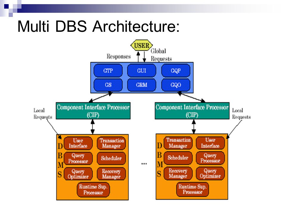 Multi DBS Architecture: