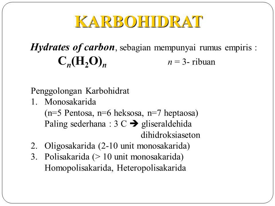 Karbohidrat Ppt Download