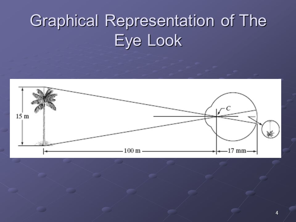 Graphical Representation of The Eye Look