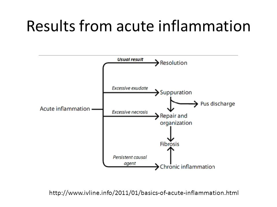 Results from acute inflammation