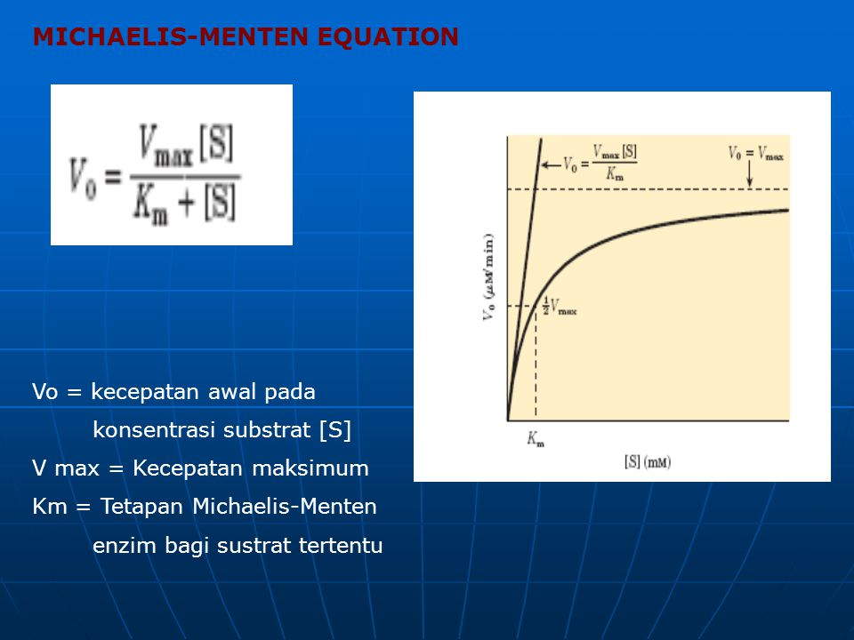 MICHAELIS-MENTEN EQUATION