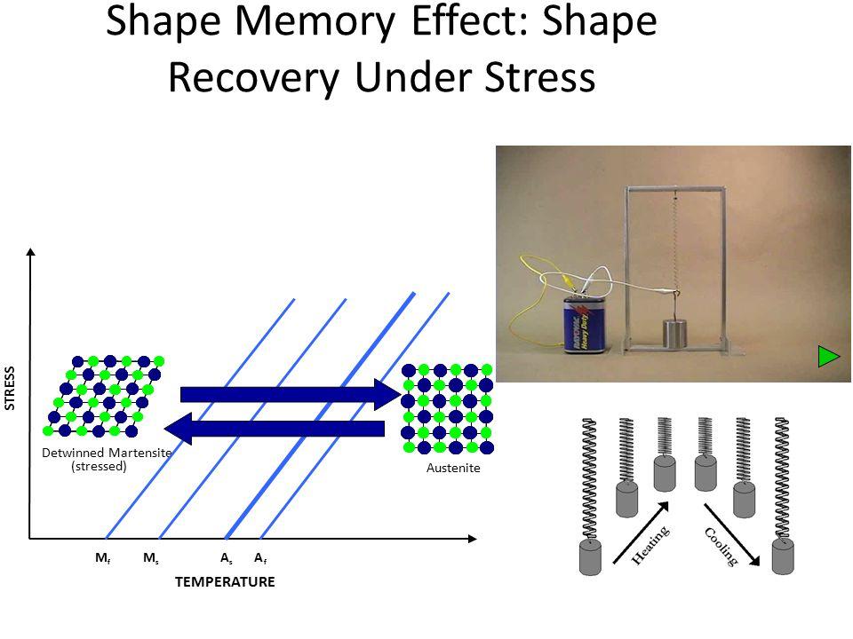 MEMORY SHAPE ALLOY Shape Memory Alloy module - Title Page