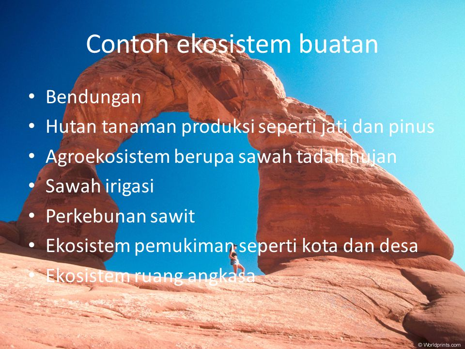 Perubahan Ekosistem Nama Vivi Alfiyah Kelas X 6 No Ppt Download