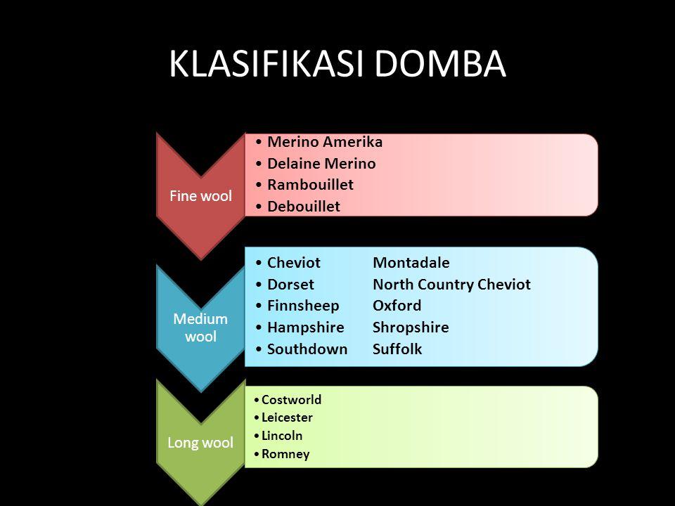 Karakteristik Dan Klasifikasi Domba Di Dunia Ppt Download
