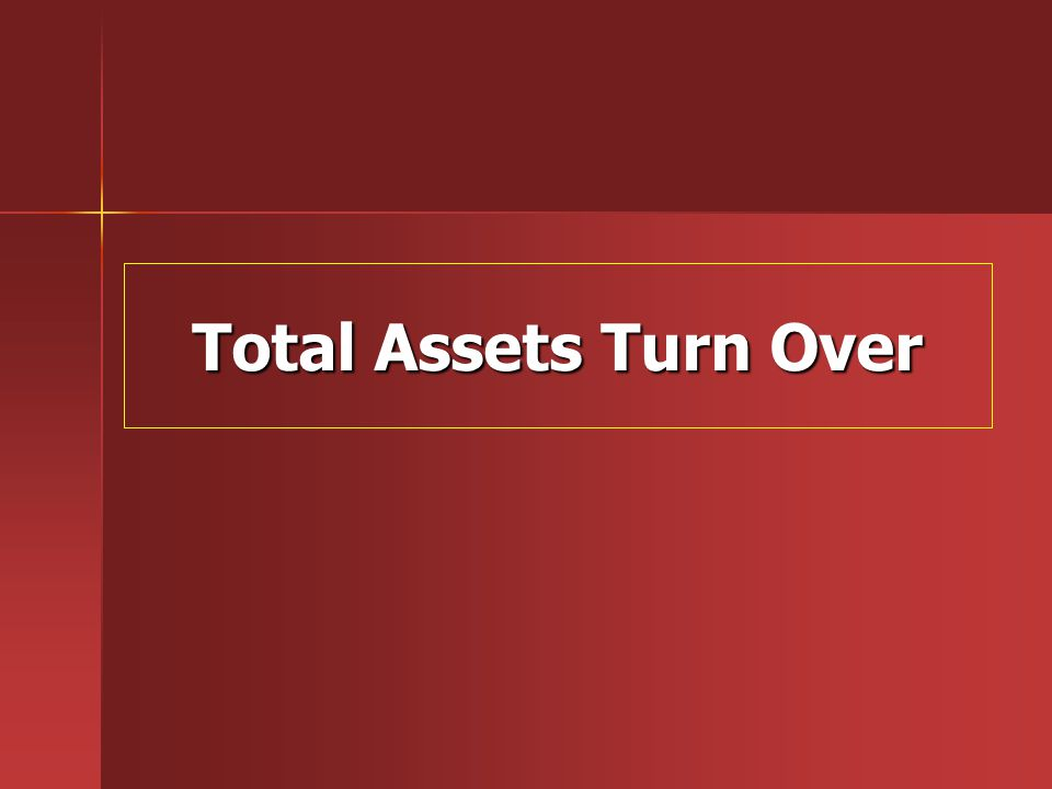 Total Assets Turn Over