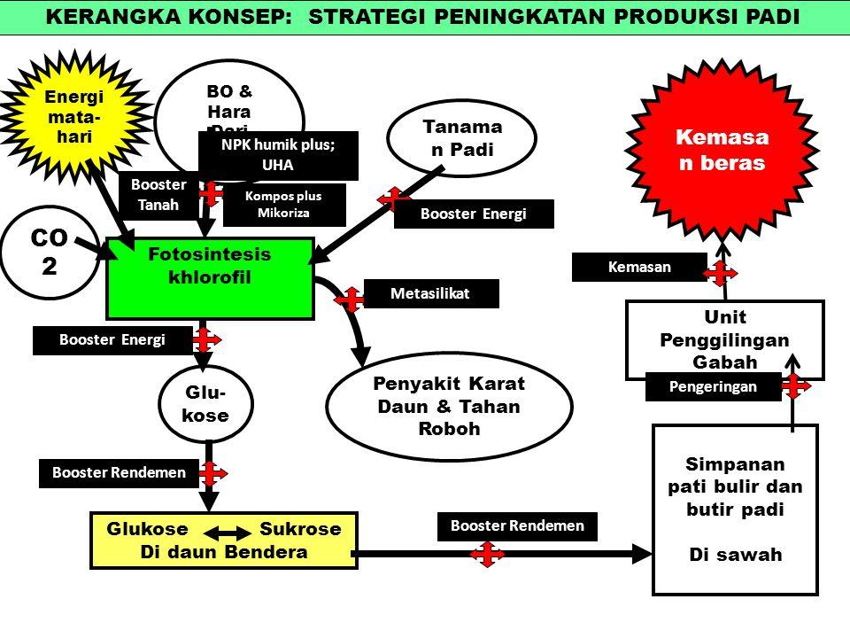 Pertanian masa depan marnolectureub ppt download kerangka konsep strategi peningkatan produksi padi ccuart Images