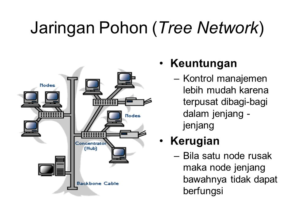 Jaringan Pohon (Tree Network)