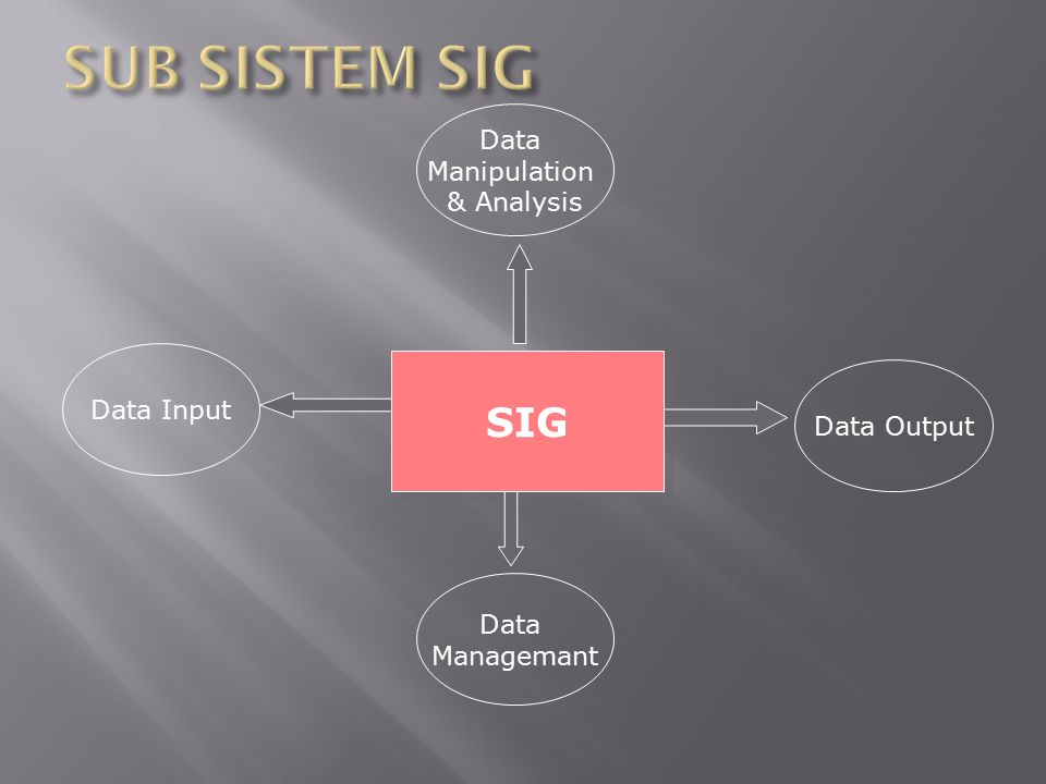 SUB SISTEM SIG SIG Data Manipulation & Analysis Data Input Data Output