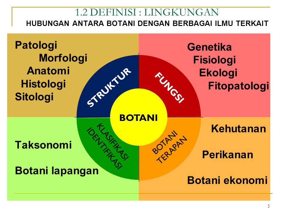 Struktur Botani