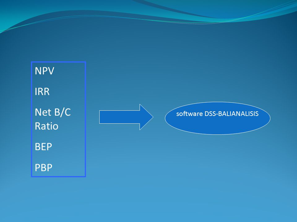 software DSS-BALIANALISIS