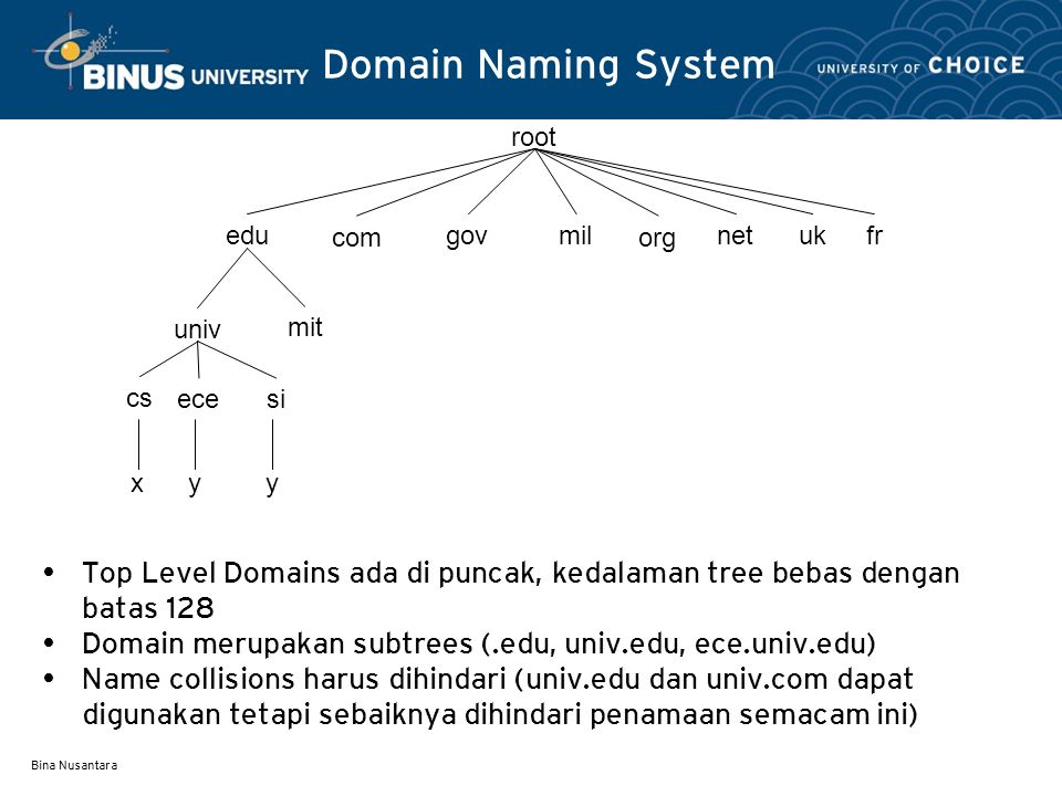 Domain Naming System root. edu. com. gov. mil. org. net. uk. fr. univ. mit. cs. ece. x.