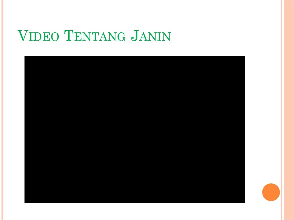 Video Tentang Janin