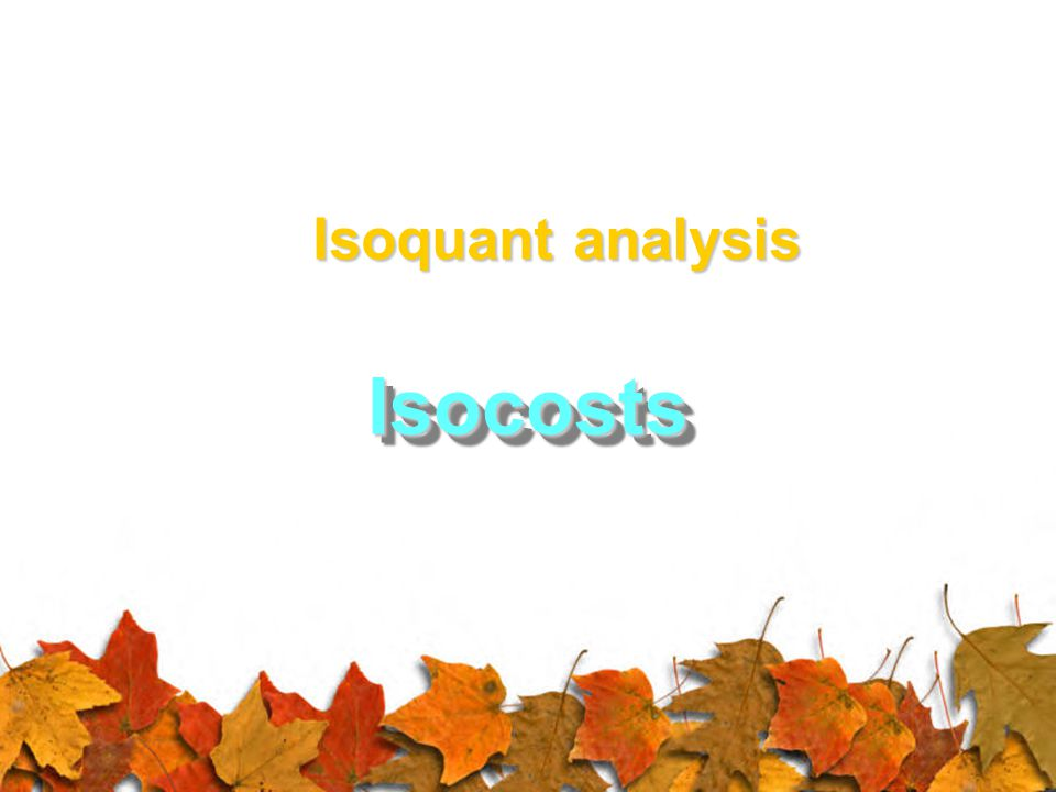 Isoquant analysis Isocosts